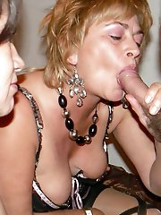 Experienced cougar in ideal shape